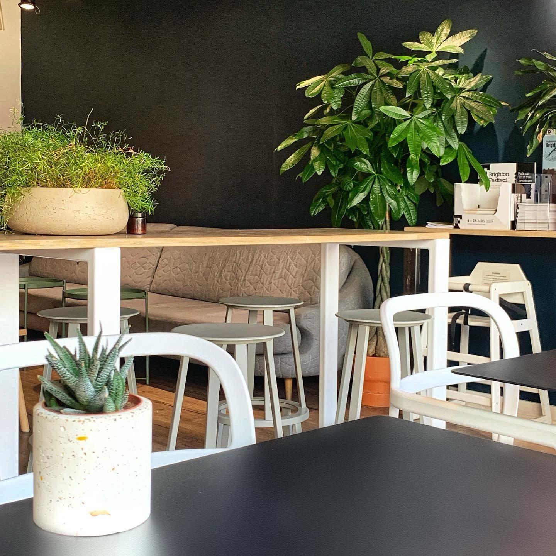 the plant room brighton interiors
